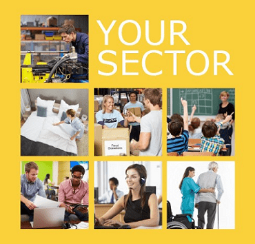Your sector